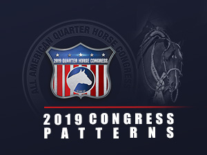 2019congress patterns button